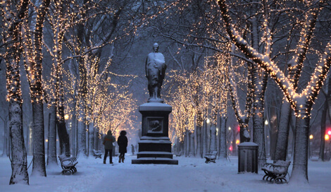 Commonwealth Avenue Mall Lights - WeekendPick